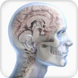 Bilder ansehen MedicalRF Lizenzfreie Bilder